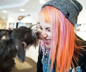 hayley williams, paramore, and dog image