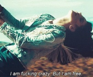 lana del rey, free, and crazy image