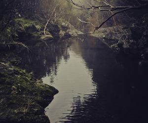 nature, dark, and water image