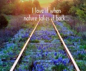nature, flowers, and quote image
