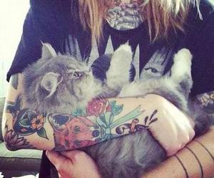 cat, tattoo, and inked image