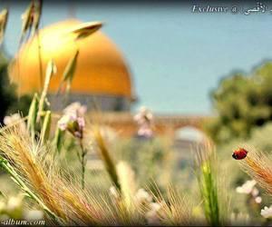 palestine, al quds, and al-aqsa mosque image