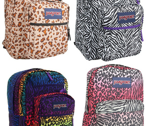 animal, bags, and colours image