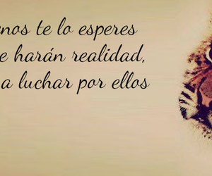 beautiful, espanol, and frases image