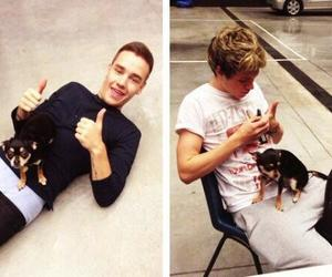 one direction, guy, and liam payne image