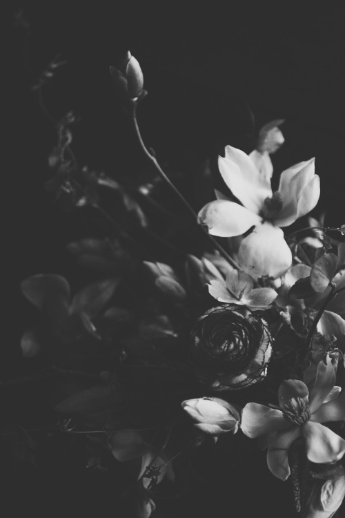 Black and white floral wallpaper tumblr driveeapusedmotorhomefo black and white wallpaper floral wallpapers patterns hd 1920x1080 overlays mightylinksfo