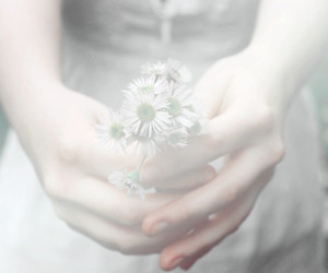 flowers, hand, and soft image