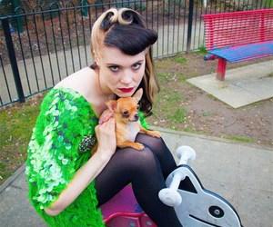 dog and kate nash image