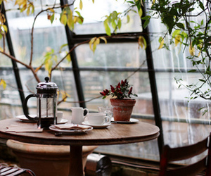 coffee, window, and table image
