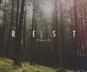 rest, jesus, and tree image
