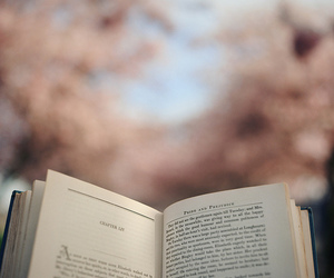 book, read, and photography image