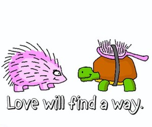 love, turtle, and way image