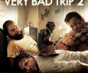 movie and very bad trip image