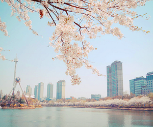 city, photography, and seoul image