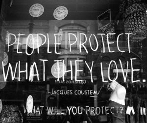 love, quote, and protect image