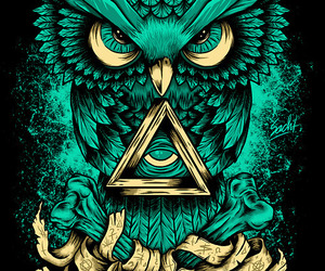 owl, wallpaper, and green image