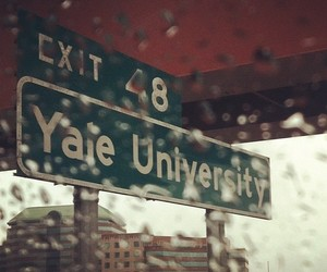 yale, rain, and cute image