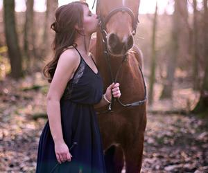 backlight, girl, and horse image