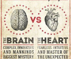 brain, heart, and fight image