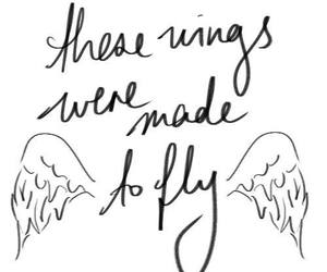 wings, fly, and little mix image