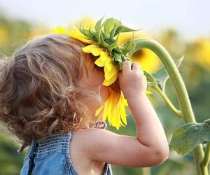 kids, cute, and sunflower image