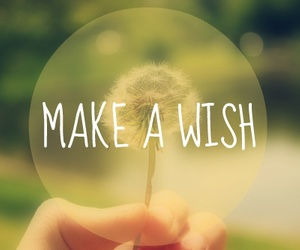 wish, quote, and make a wish image