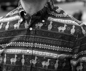 shirt and boy image