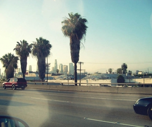 los angeles, palms, and street image