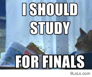One week before finals - Funny Pictures, Funny Quotes, Funny ...