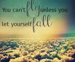fall, fear, and fly image