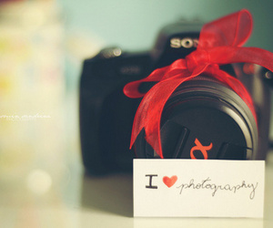 cameras, photography, and love image