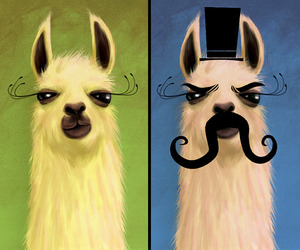 llama and mustache image