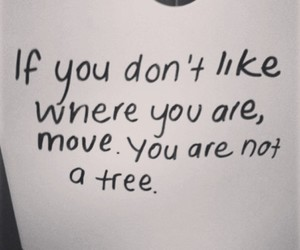 Move, quotes, and tree image