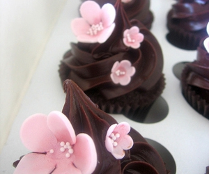 brown, cupcake, and cupcakes image