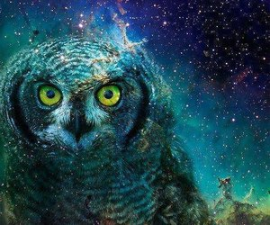 owl and space image