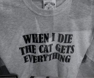 cat, die, and text image