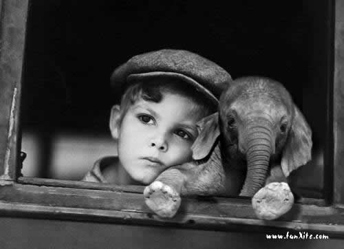 Boy N Baby Elephant Other Cool Wallpapers On We Heart It