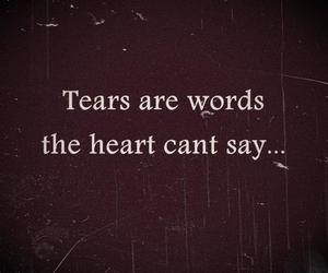 tears, heart, and words image