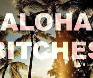 bitch, Aloha, and summer image