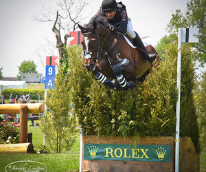 cross country, equestrian, and eventing image