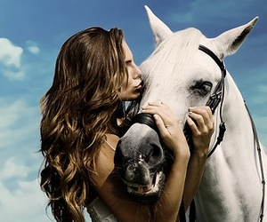 horse, kiss, and woman image
