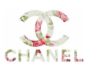 chanel, flowers, and follow image