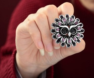 accessories, rings, and owls image