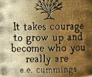 courage, quotes, and dreams image