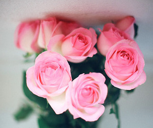 flowers, Dream, and pink image