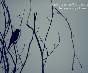 loneliness, trees, and emtiness image