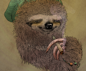 weed and sloth image
