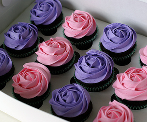 cupcakes and photography image
