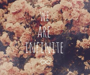 infinite, flowers, and quotes image