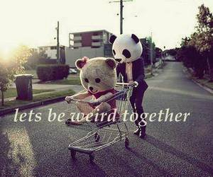 weird, together, and panda image